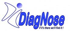שיווק באינטרנט לחברת DiagNose